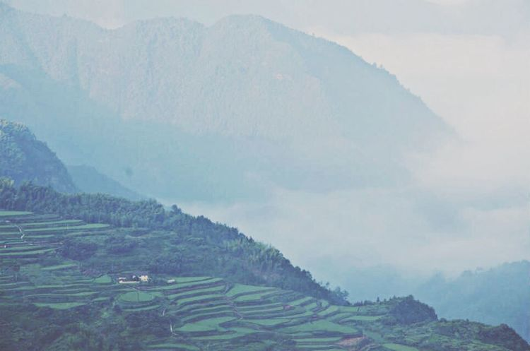 Nature Mountains Green Enjoying Life Zhejiang,China Nanjian Yan,Lishui,Zhejiang