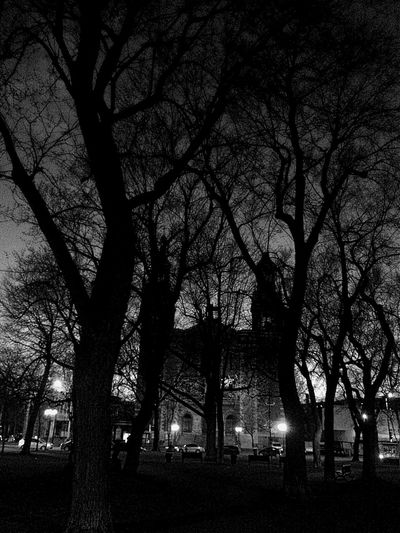 Nightphotography Urban Church Park