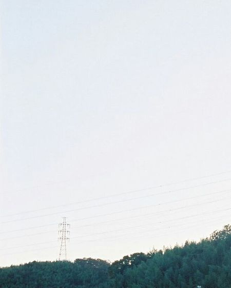 Portra400 Olympus倶楽部 Olympuspeneed Myolympusstyle Film Filmphotography Filmcamera オリンパス倶楽部 オリンパスペンEED フィルム写真普及委員会 フィルム写真 フィルムに恋してる Kodak フィルム ふぃるむカメラ フィルム部 ハーフサイズカメラ 写真好きな人と繋がりたい ファインダー越しの私の世界 カメラ好きな人と繋がりたい コダック ポートラ400 Halfsizecamera 空 Sky オリンパスPENEED