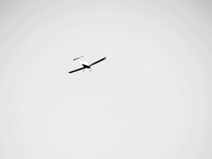 Winglet Plane Winglets Two Colors Airplane Light Vehicle In Sky Bnw Seizing Bnw Fly Full Lenght Low Angle View Air Vehicle Moving Plane