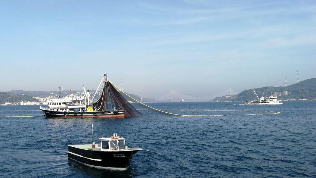 Fishermen of bosphorus Fisherman Bosphorus Fishing City Cityscape Tall Ship Urban Skyline Water Nautical Vessel Skyscraper Sea Suspension Bridge Sailing Ship