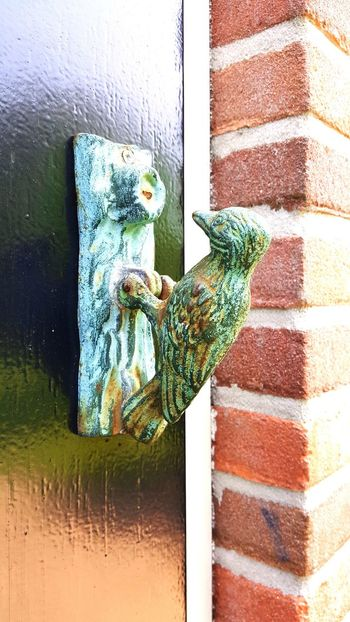 Door Outdoors Day No People Close-up Green Color Like A Bird