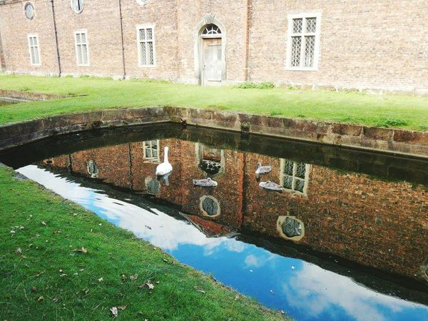 Reflection Water Built Structure Architecture Building Exterior Outdoors No People Grass Dunham Massey National Trust 🇬🇧 Duck Building Reflection Pond