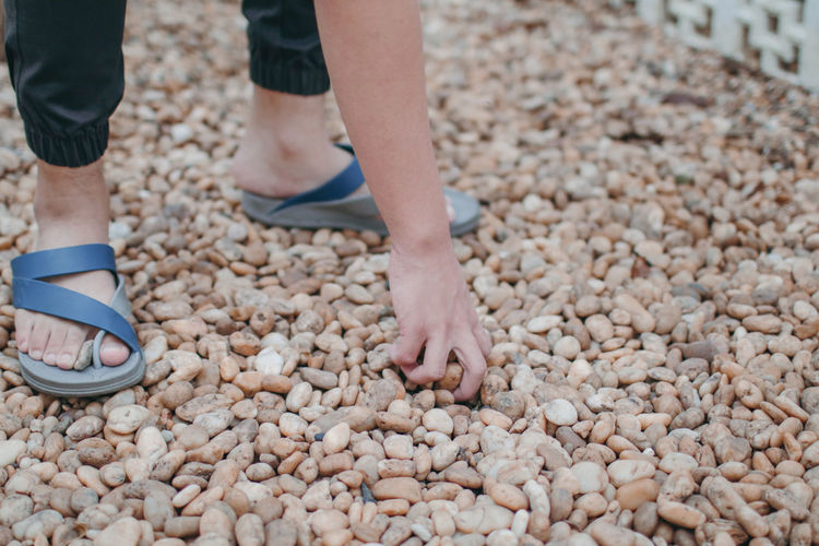 Low section of man picking pebbles