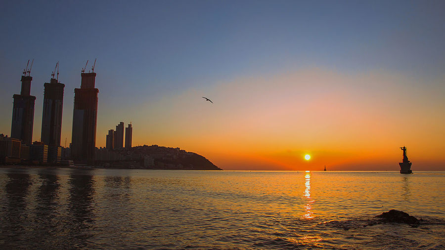 this Sunrise photo was taken at Haeundae beach, Busan, South Korea. this is very famous beach of South Korea. EyeemSouthKorea Sunrise_Collection Animal Themes Architecture Beauty In Nature Bird Building Exterior Built Structure City Day EyeemBusan Eyeemhere Flying Nature No People Orange Color Outdoors Scenics Sea Sky Skyscraper Sun Sunset Travel Destinations Water