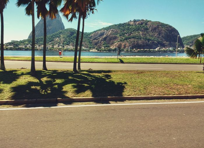 Brazilian Sugarloaf Mountain Analogue Retro Tropical Vintage Sunny Water Day Outdoors Beach Nature Bay Backgrounds Tranquillity Beauty In Nature Palm Trees Full Frame Peace Outside Pão De Açucar Tourist Attraction  Tourist Destination Tree Neighborhood Map Sommergefühle