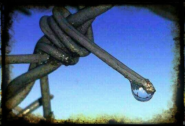 Industrial Landscapes Urbandecay Urban Barbed Wire After The Rain Blue Wave
