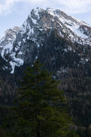 nice monutain Mountain Scenics - Nature Tree Beauty In Nature Plant Nature Environment Landscape Rock Land Snow Cold Temperature No People Mountain Range Sky Tranquil Scene Non-urban Scene Tranquility Day Winter Formation Outdoors Mountain Peak Snowcapped Mountain High