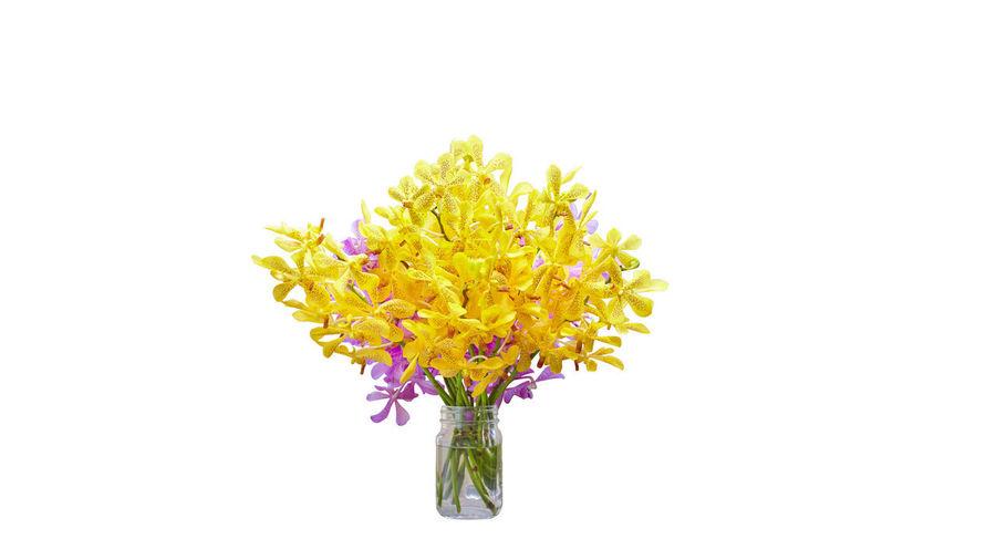 A vase of