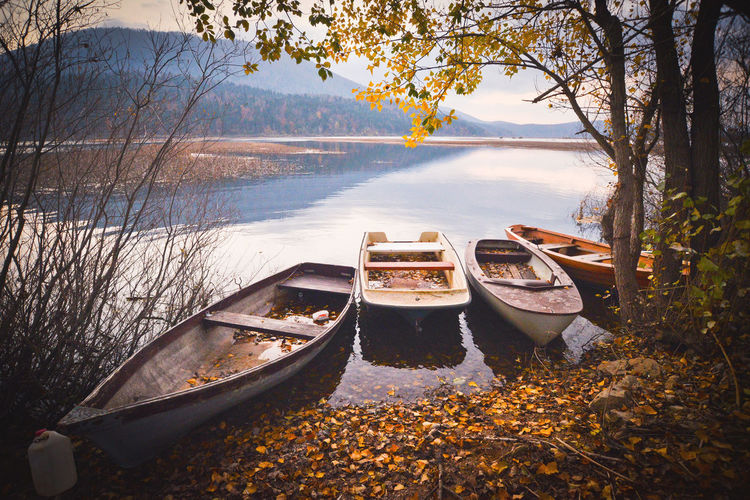 Beauty In Nature Boat Branch Cerknica Cerkniško Jezero Lake Lakeshore Landscapes With WhiteWall Mode Of Transport Moored Nature Nautical Vessel Reflection River Rowboat Scenics Sky Tranquil Scene The Great Outdoors - 2016 EyeEm Awards Transportation Travel Tree Water