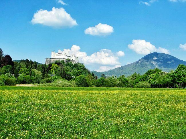 Walking from Leopoldskron Palace to Hohensalzburg Fortress. Europein50days Eurotrip Europe Salzburg Austria FlirtingWithNature Green Meadow Festung Hohensalzburg Fortress