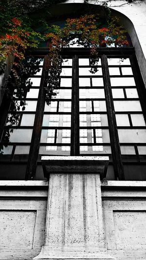 Bw Window Colors Shadow Rome Reflections Nature No People Beauty In Nature Going Around The City Street Photography Low Angle View