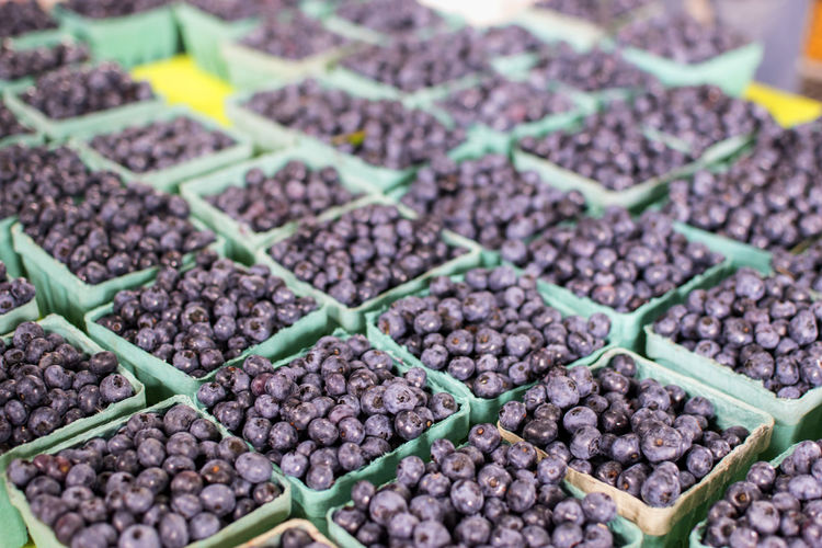 Albany New York Farmers Market Abundance Blue Blueberries Bunches Cartons Close-up Food Food And Drink Freshness Fruit Healthy Eating Large Group Of Objects No People Produce Purple
