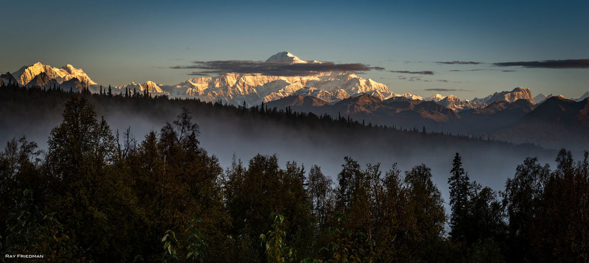 Backgrounds Blue Dawn Denali Denali National Park Forest Horizontal Igniting Landscape Morning Mountain Mountain Peak Mountain Range Mt. McKinley Natural Parkland Nature Night No People Outdoors Pinaceae Sky Snow Social Issues Sunset Tree