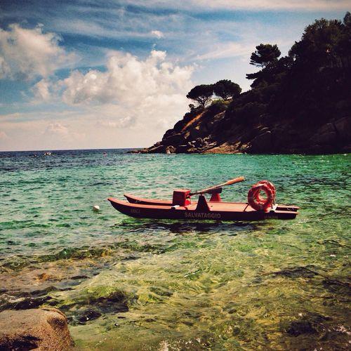 Paradise Lost NEM Submissions NEM Landscapes AMPt_Nature AMPt - Memory