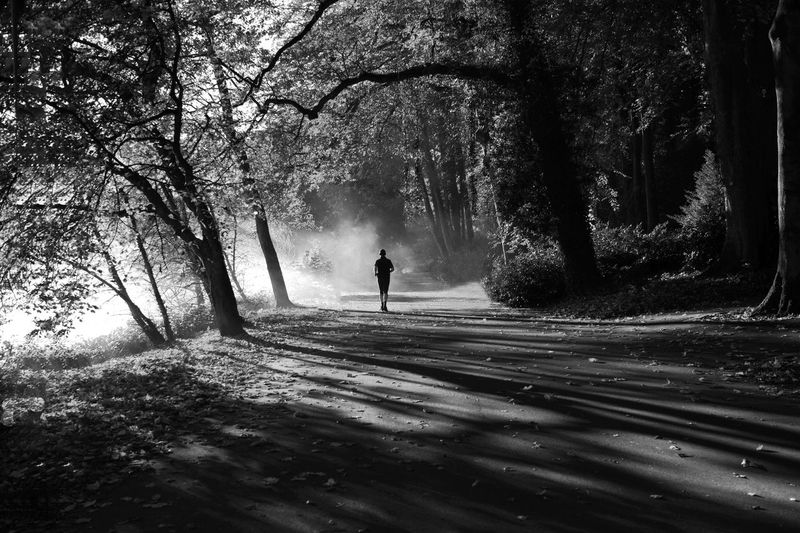 Jogger im Morgennebel Fog Tree Nature Full Length One Person Forest Real People Day EyeEmNewHere