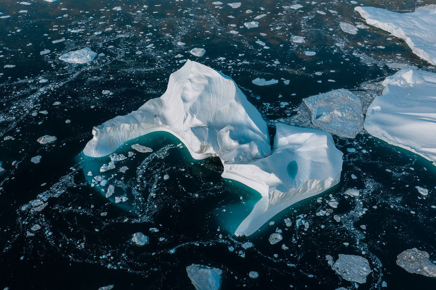 Water Sea No People Underwater Animal Themes Nature High Angle View Animals In The Wild Animal Wildlife Animal UnderSea Day Sea Life Swimming Beauty In Nature Outdoors Close-up Marine Melting Iceberg Greenland