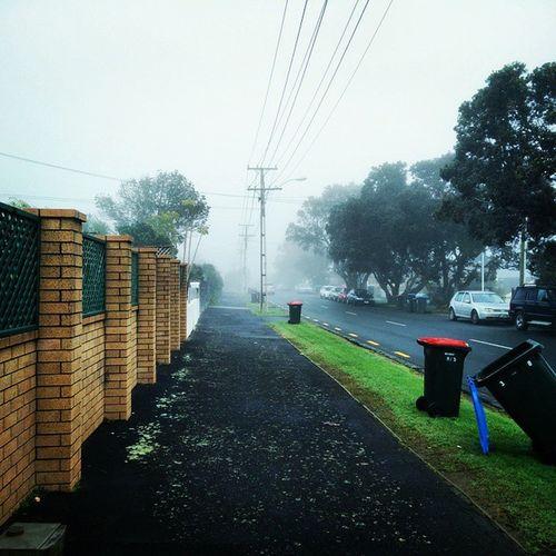 That one time I walked into a horror movie. Imasurvivor Alive  Fog