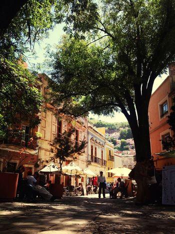 Se piensa donde no se es y se es donde no se piensa. Freud Guanajuato Festival Cervantino