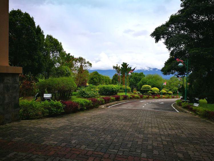 Tree Cloud - Sky Outdoors Sky Nature The Great Outdoors - 2017 EyeEm Awards Beauty In Nature Nature Sabah Kota Kinabalu Malaysia