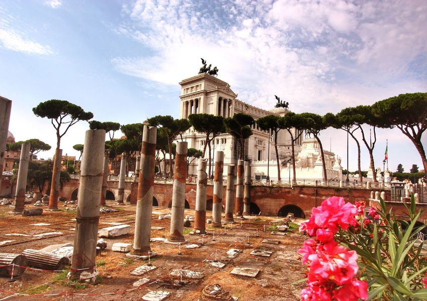 TheOldAndTheNew-Rome Sky Flower Growth Tree Sunlight Plant Outdoors Cloud - Sky Nature No People Beauty In Nature Day Architecture Fragility National Monument To Victor Emmanuel Ⅱ Rome Italy