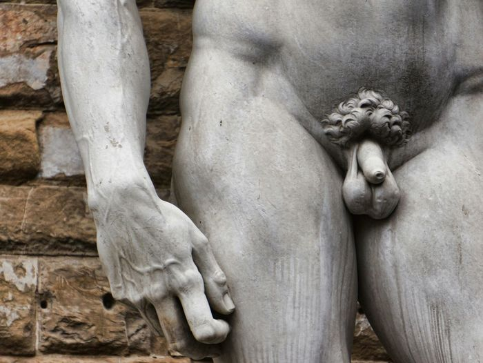 Mid-section of michelangelo's david