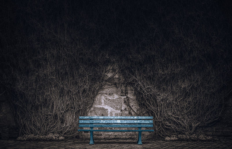 Wildwuchs Art Artful ArtWork Bank Bench Growth Melancholic Melancholy Mysterious Mysterious Place Mystical Proliferation Rank Scene Scenery Seat Settee Solitude Uncontrolled Wildwuchs