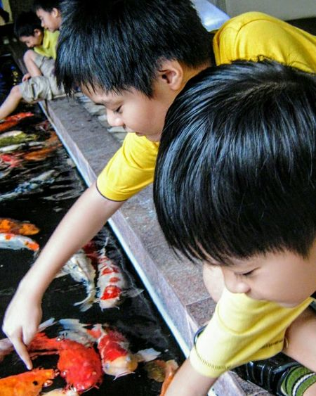 Playing with the fish Child Kidsphotography Two People Kids Having Fun Kids Of EyeEm Real People Males  Togetherness Day Outdoors Pond Water Koifish Playing With Fish Fish Sitting EyeEm Gallery Best EyeEm Shot EyeEmOnMarket The Portraitist - 2017 EyeEm Awards Focus On The Story