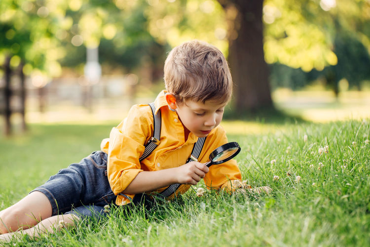 Rear view of boy sitting on grass