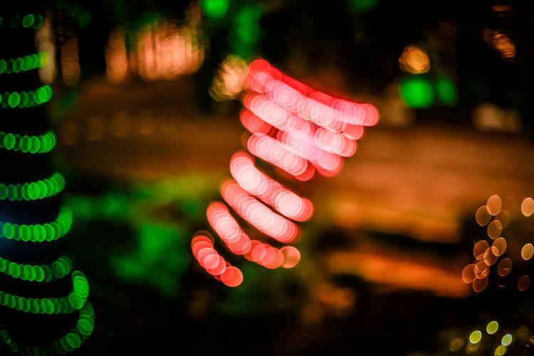 Defocused image of illuminated trees at night