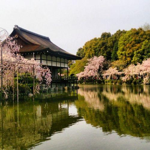 平安神宮 京都 日本 日本,京都 Koyto Japan,koyto Japan