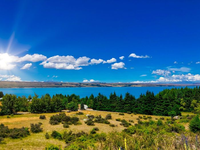 During the road trip in New zealand Sky Plant Tranquil Scene Scenics - Nature Tranquility Cloud - Sky Beauty In Nature Tree Environment Non-urban Scene Landscape Day Nature No People Land Blue Growth Water Idyllic Green Color Outdoors