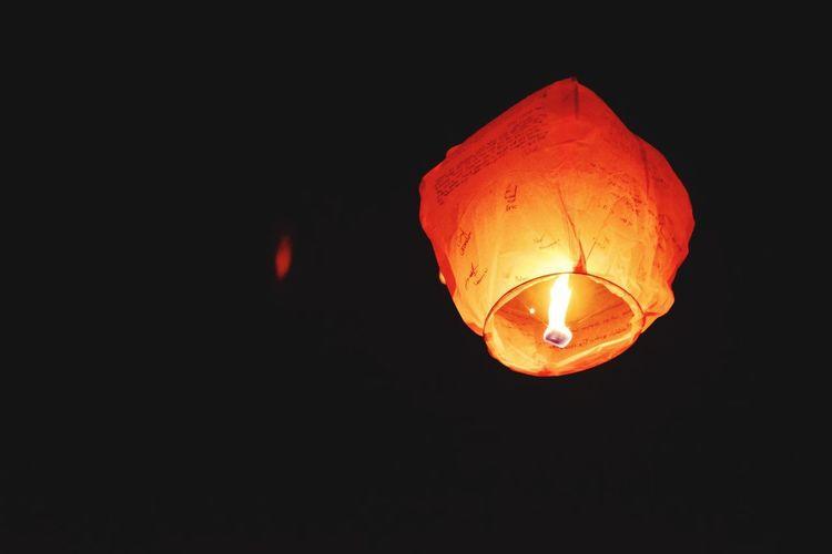 Fire Light Love