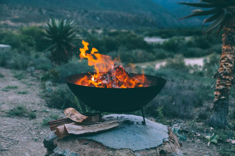 summer evenings. EyeEmPaid EyeEm Selects Burning Fire Heat - Temperature Flame Fire - Natural Phenomenon Nature Day Outdoors Fire Pit Plant Environment Glowing Orange Color Firewood Focus On Foreground Tree Log