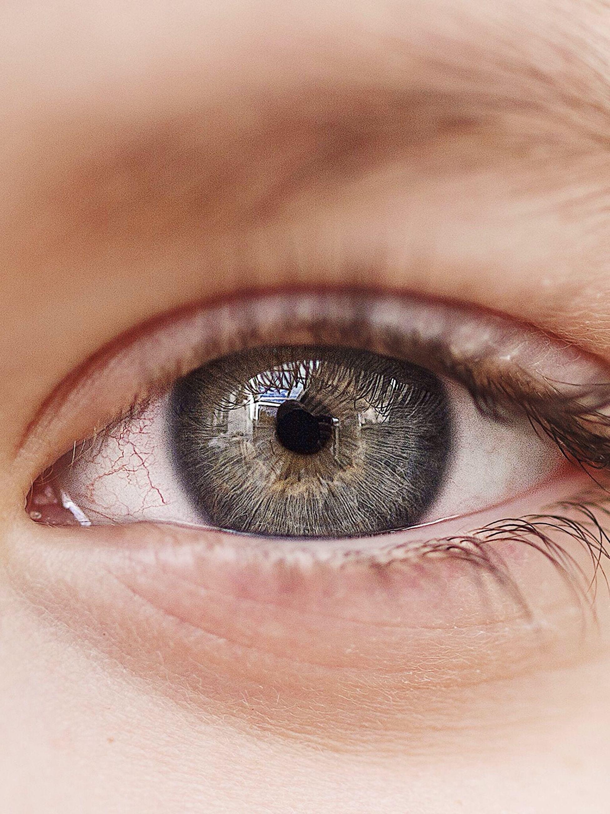 human eye, indoors, close-up, eyelash, eyesight, human skin, extreme close-up, sensory perception, part of, eyeball, extreme close up, iris - eye, unrecognizable person, full frame, macro, vision, lifestyles