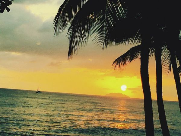 Make Magic Happen Caribbean Life Island Living Sunset Silhouettes Beachphotography Desecheo m