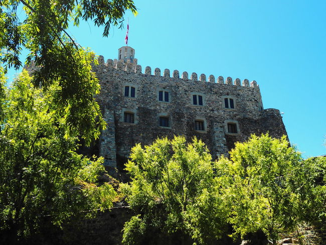 Architecture Building Exterior Built Structure Castle Clear Sky Day Georgia Growth History Low Angle View Nature No People Outdoors Plant Sky Travel Destinations Tree