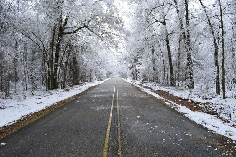 Empty road along snow covered trees