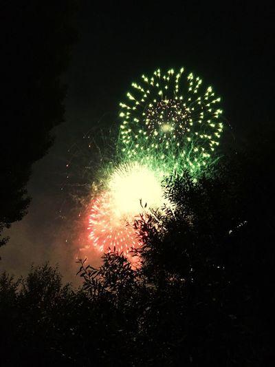 NYE 2016 Firework Display Low Angle View