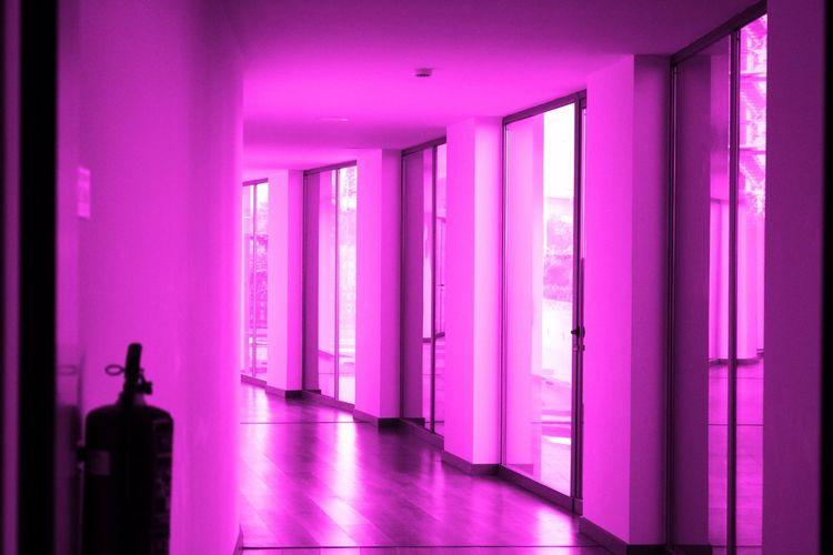 View of purple house window