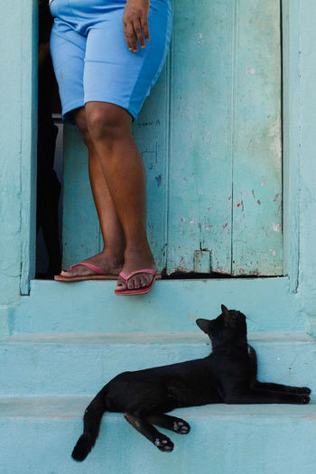 Cat Domestic Animals Domestic Cat Door Entrance Feline Feline Portraits Low Section One Animal One Person Pets Real People Stairs The Street Photographer - 2017 EyeEm Awards Place Of Heart Pet Portraits