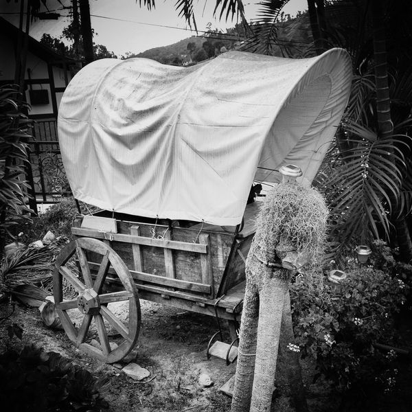 Old Wagon Wagonwheel Wagon  AMPt_community Bw_ Collection Eyeem Monochrome Black And White Photography Monochrome EyeEm Bnw Bnw_captures