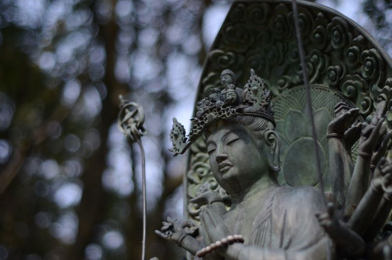 Buddha Buddhist