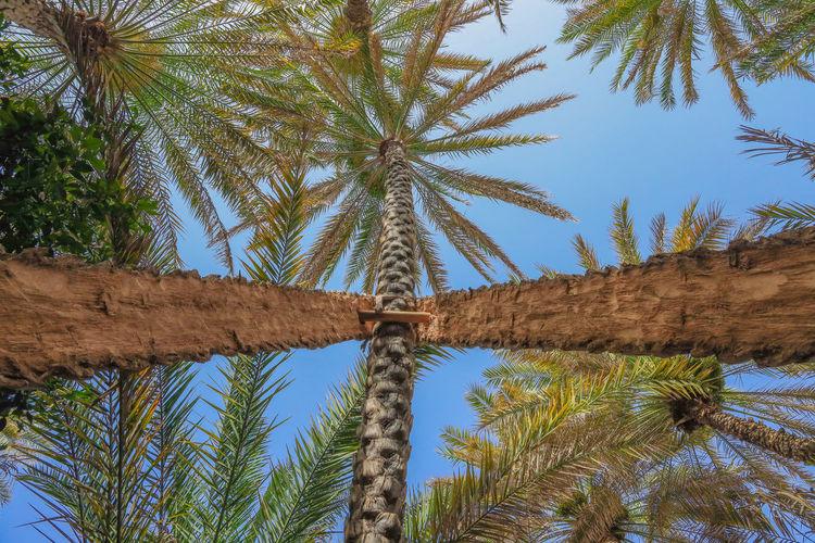 #sky #oman