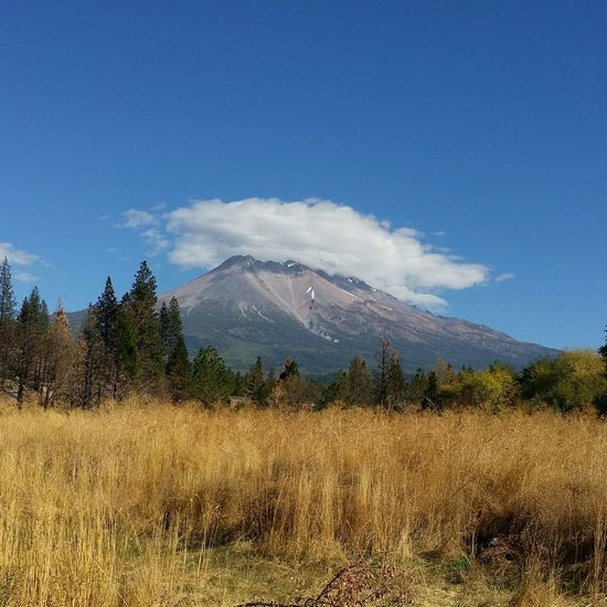 Mount Shasta EyeEm Nature Lover Tranquil Scene Point And Shoot