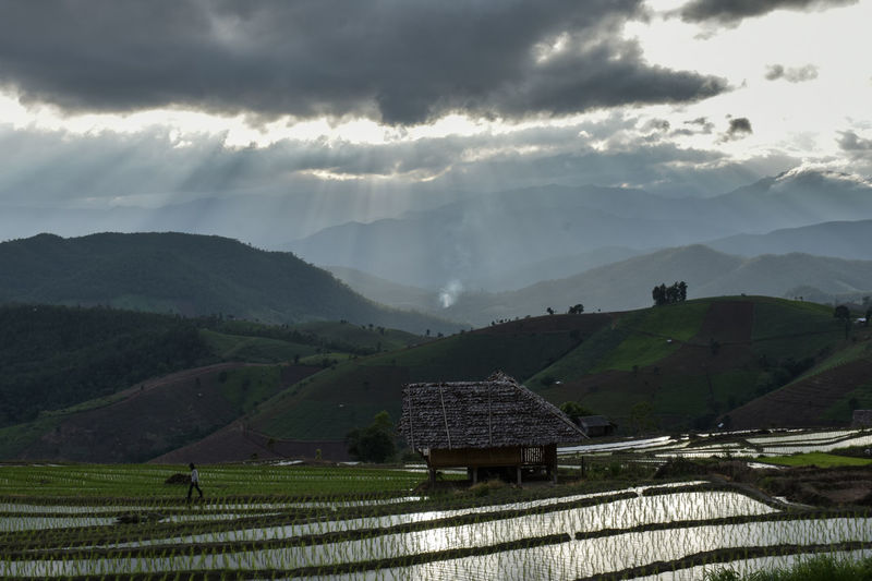 Agriculture Beauty In Nature Cloud - Sky Day Farm Field Growth Landscape Mountain Mountain Range Nature No People Outdoors Rural Scene Scenics Sky Terraced Field Tranquil Scene Tranquility