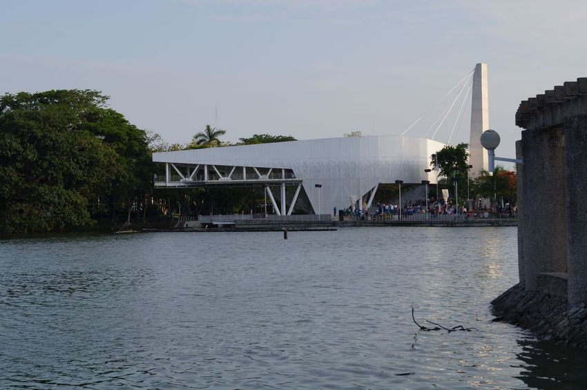 #museum #park #parque Thomas Garrido Architecture Bridge - Man Made Structure City Connection Day Outdoors River Sky Tree Water