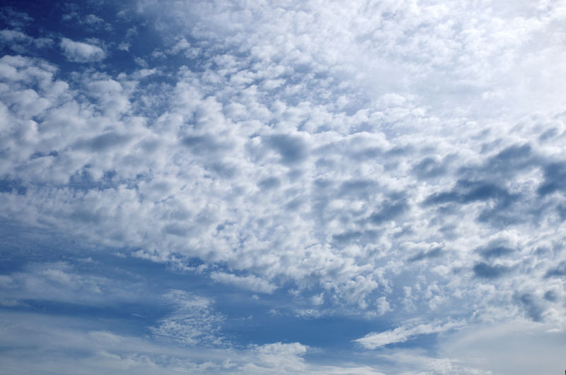 Cloud - Sky Sky Beauty In Nature Low Angle View Scenics - Nature Tranquility No People Nature Day Tranquil Scene Outdoors Idyllic Backgrounds Cloudscape Blue White Color Full Frame Sunlight Fluffy Meteorology