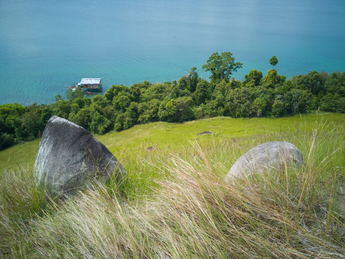 Stunning view and beautiful tropical island hillside overlooking sea at Sirongol Hill in Timbun Mata Island, Semporna, Sabah Malaysia. Semporna Sabah Malaysia Island Hill Ocean Landscape Plant Land Nature Day Grass No People Scenics - Nature Tranquility Tranquil Scene Beauty In Nature Outdoors Sky Environment Field Green Color Water Tree Growth