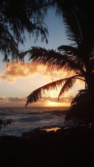 Serenity Sunset Silhouette Beach Sea Sky Nature Water Beauty In Nature EyeEmNewHere